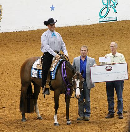 Hershey Sweepstakes 2015 - dustin eickenhorst and only after midnight win 3 year old novice horse limited rider