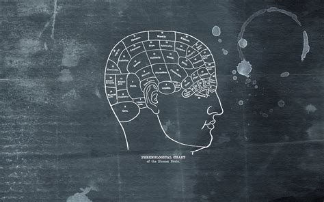 psychology images the brain poem wallpaper and image gallery psychology wallpaper