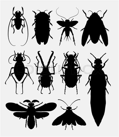 insect bug small animal silhouette  good