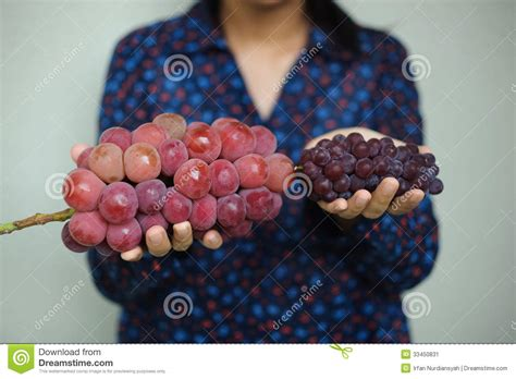 Japanese Big by Big And Small Japanese Grapes Stock Image Image 33450831