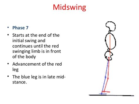 swing phase of gait gait analysis