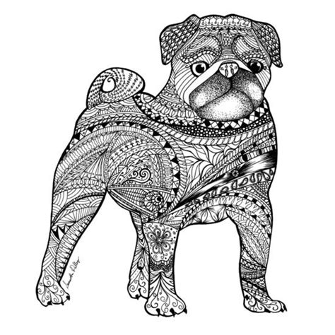 pug spares 17 best images about mikaylee on pretty drawings coloring and coloring