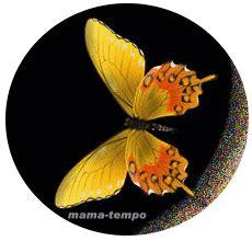 glitzerbilder schmetterlinge butterfly blinkies pics
