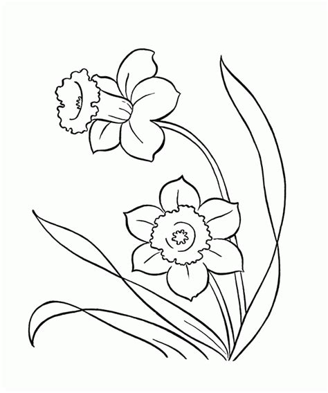 coloring pages of spring flowers spring flower coloring pages coloring home