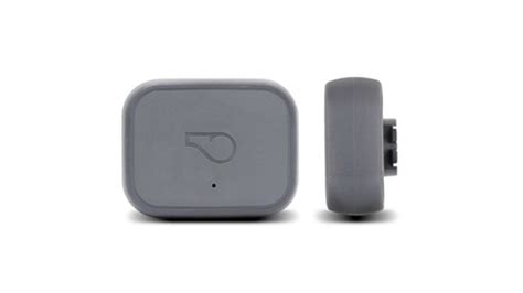 whistle tracker review whistle 3 gps pet tracker activity monitor review ratings creative products