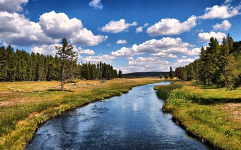 yellowstone national park wallpapers high definition interfacelift wallpaper grizzly river