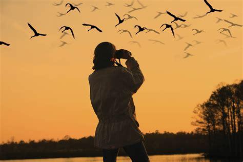 selcuk bird watching tour