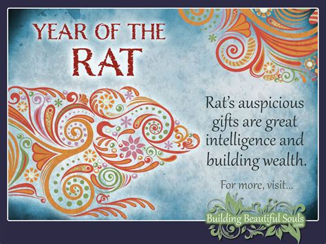 chinese zodiac rat year of the rat chinese zodiac