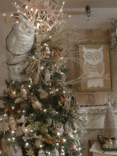 owl themed christmas night owl pinterest