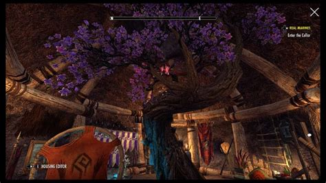 can you buy a house in eso jester day event eso tamriel elder scrolls amino amino