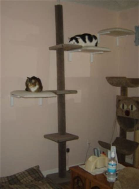 your own cat tree thriftyfun