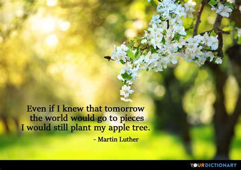 apple quotes apple quotes quotes about apple yourdictionary