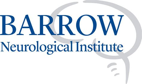 Cabinets Used Sale by Barrow Neurological Institute Wins Best Basic Science