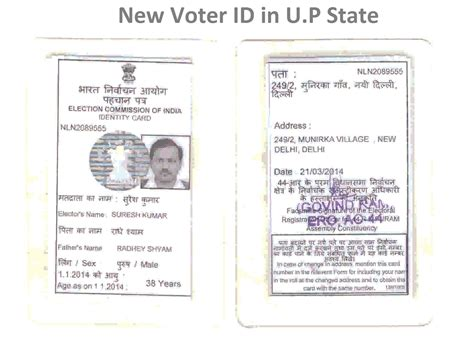 voter id card template election cards gallery