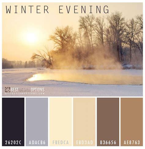 winter color schemes best 25 winter colors ideas on winter colour