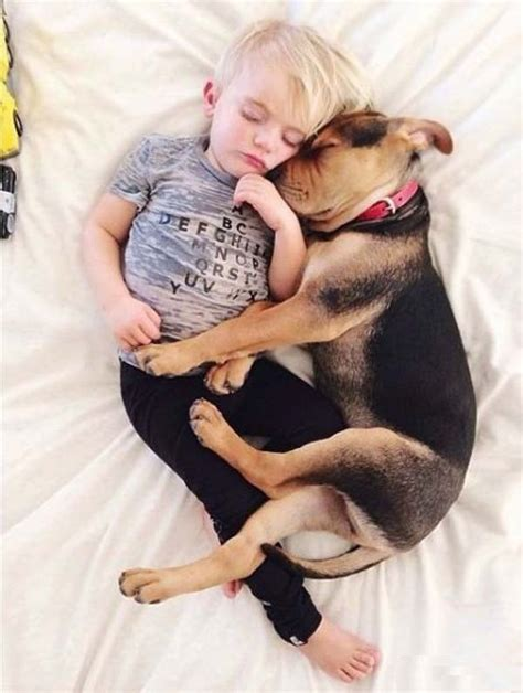 sleeping baby and puppy 5 baby s dogs adorable pics animals pets pics story