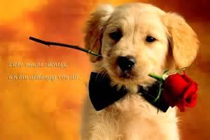 romantische liebessprüche liebesspruch