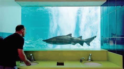 aquarium bathroom 12news com scottsdale s odysea aquarium has the best bathroom in america company says
