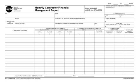 monthly management report template free
