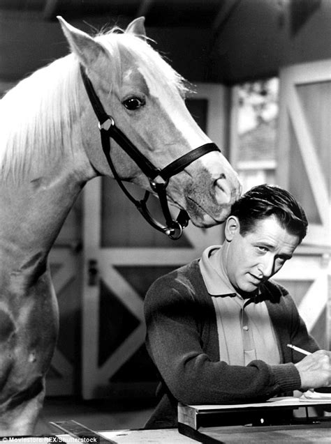 theme song mr ed mister ed s alan young deag at 96 daily mail online