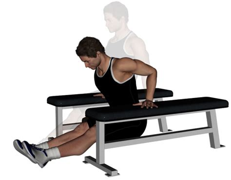 bench dips for chest dips for chest tail mots cl 233 s