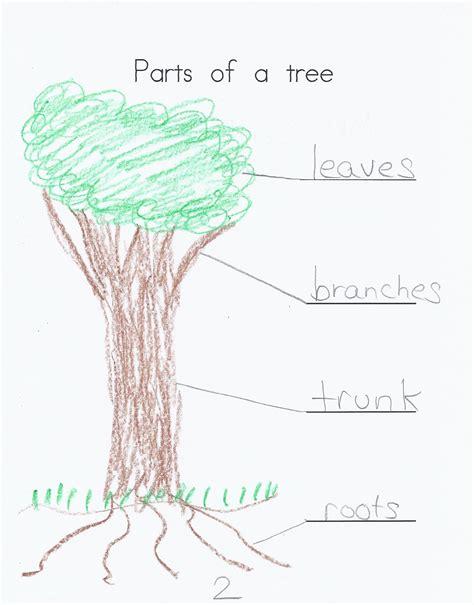 labeled tree diagram april 2011 kindergarten nana page 2