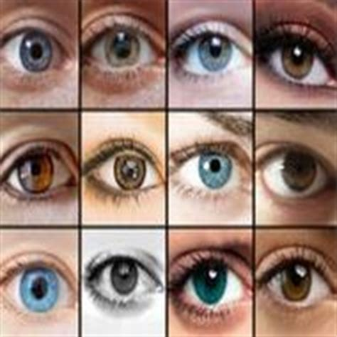 how to determine eye color new method may determine hair eye colour of our