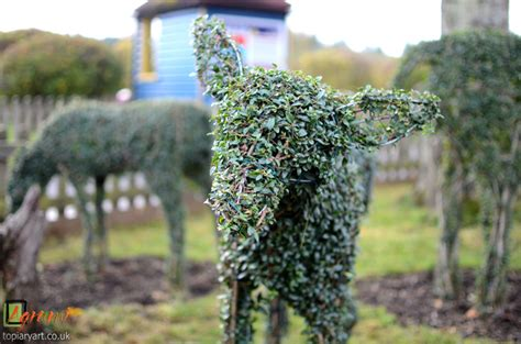 deer topiary animals archives bespoke topiary plant sculptures