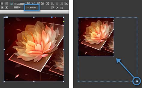 resize content   frame  indesign adobe indesign