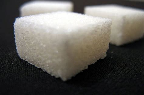 is sugar bad for dogs foods that are bad for dogs sugar