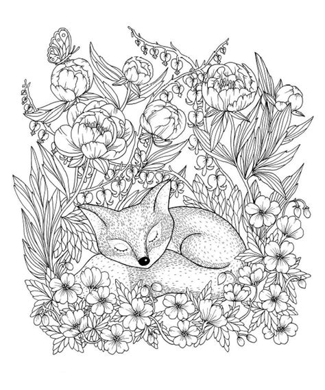 fox mandala coloring page 789 best animal coloring pages for adults images on