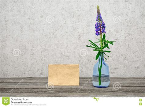 One Flower Vase by One Flower A Lupine In A Glass Vase Stock Photo Image