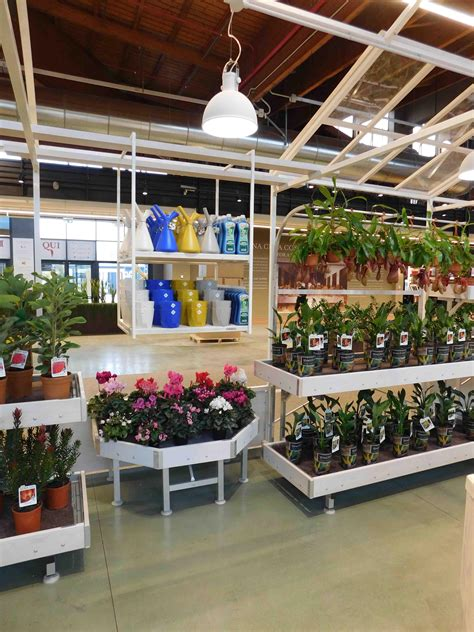 Greenhouse Garden Center by Greenhouse Garden Center Identity Furniture For Plants