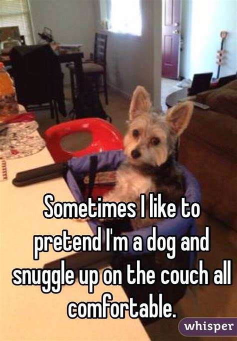snuggle up on the couch sometimes i like to pretend i m a dog and snuggle up on