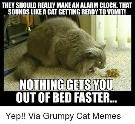 vomit meme 25 best memes about grumpy cat meme grumpy cat memes