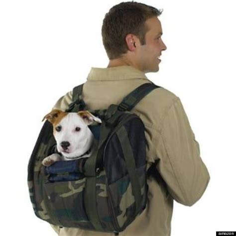 backpacks for dogs 10 backpacks that will make you the coolest kid in school huffpost