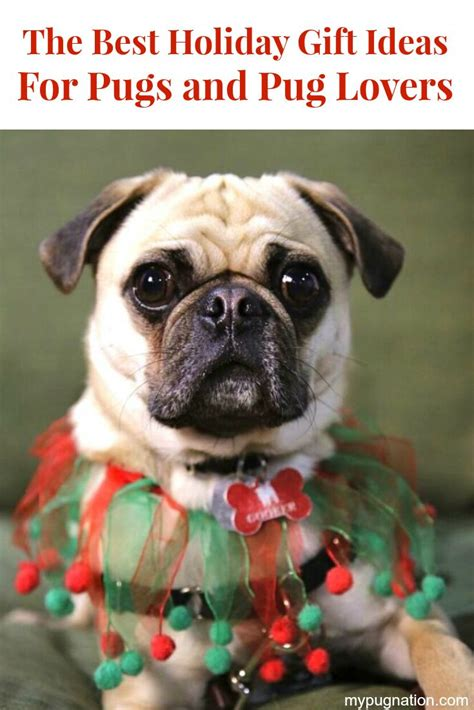 pug loafers 1000 images about join the pugs friends on