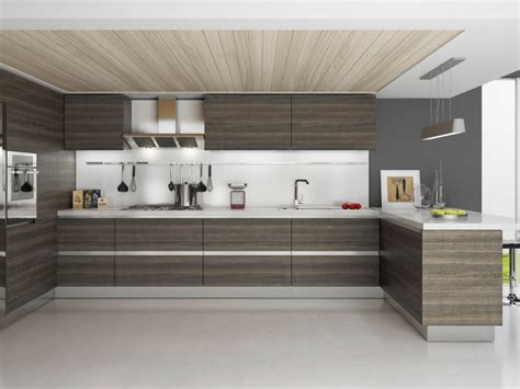 Contemporary Style Kitchen Cabinets by Modern Rta Kitchen Cabinets Usa And Canada