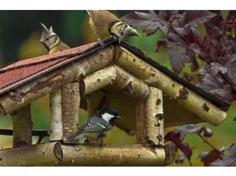 Vogelhaus Basteln Mit Kindern by Ein Vogelhaus Mit Kindern Selbst Bauen Mamiweb De