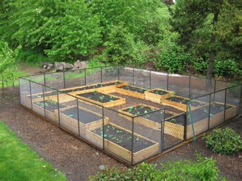 Raised Garden Bed Fence Ideas 114 Best Raised Bed Gardens Images On