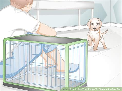 how to your to sleep in a kennel how to get your puppy to sleep in its own bed 13 steps