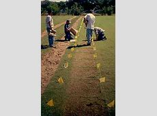 Bermudagrass Research Hennessey Ok