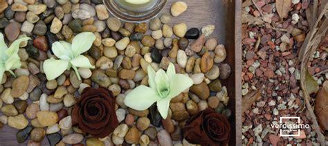 decora con plantas de interior decora fuentes de interior secas con plantas preservadas