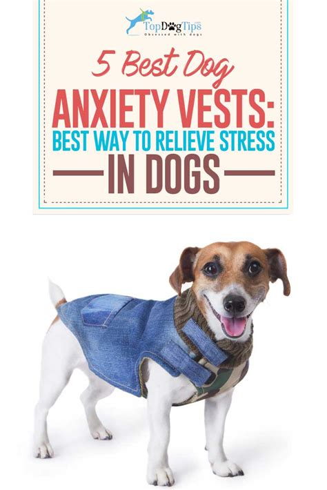 dogs with anxiety top 5 best anxiety vests and anti anxiety wraps in 2017