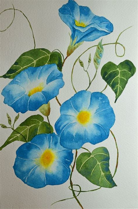 morning glory flowers fine art watercolor painting blue