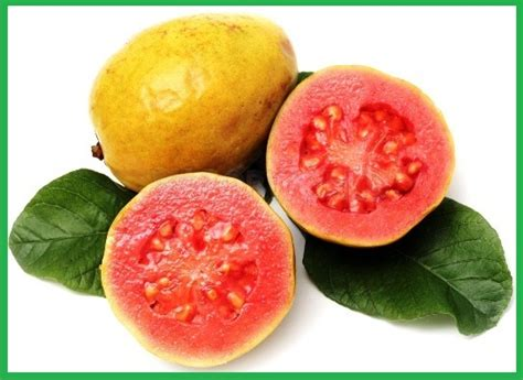 what color is guava guava health benefits god s healing plants