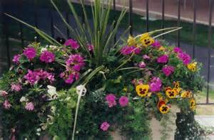 Outdoor Planter Ideas by Outdoor Planters Outdoor Decorating Ideas