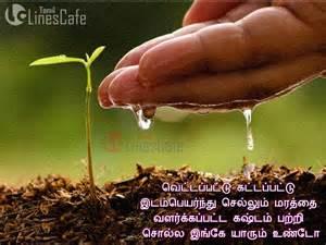 Maram Valarpom Essay In Tamil by Maram Valarpom Tamil Kavithai Tamil Linescafe