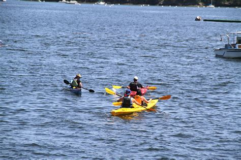 boat tours from southwest harbor maine guide to visiting southwest harbor maine boat tours
