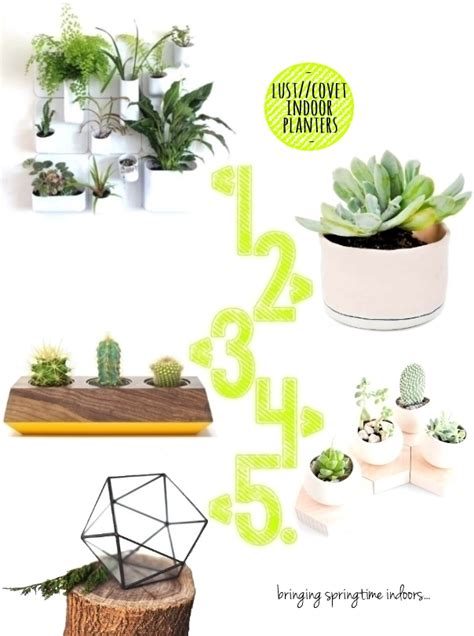 Indoor Planters Uk by Five Of The Best Jungle Indoor Planters